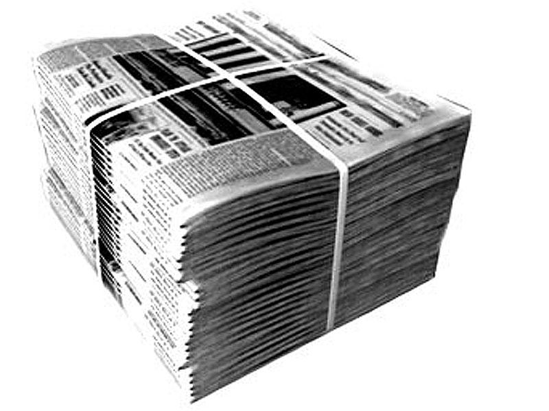 еж и газета.