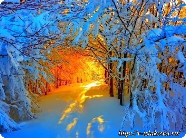 С зимой Вас!