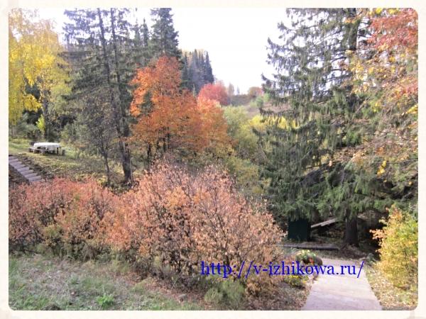 Золотая осень. Фоторепортаж